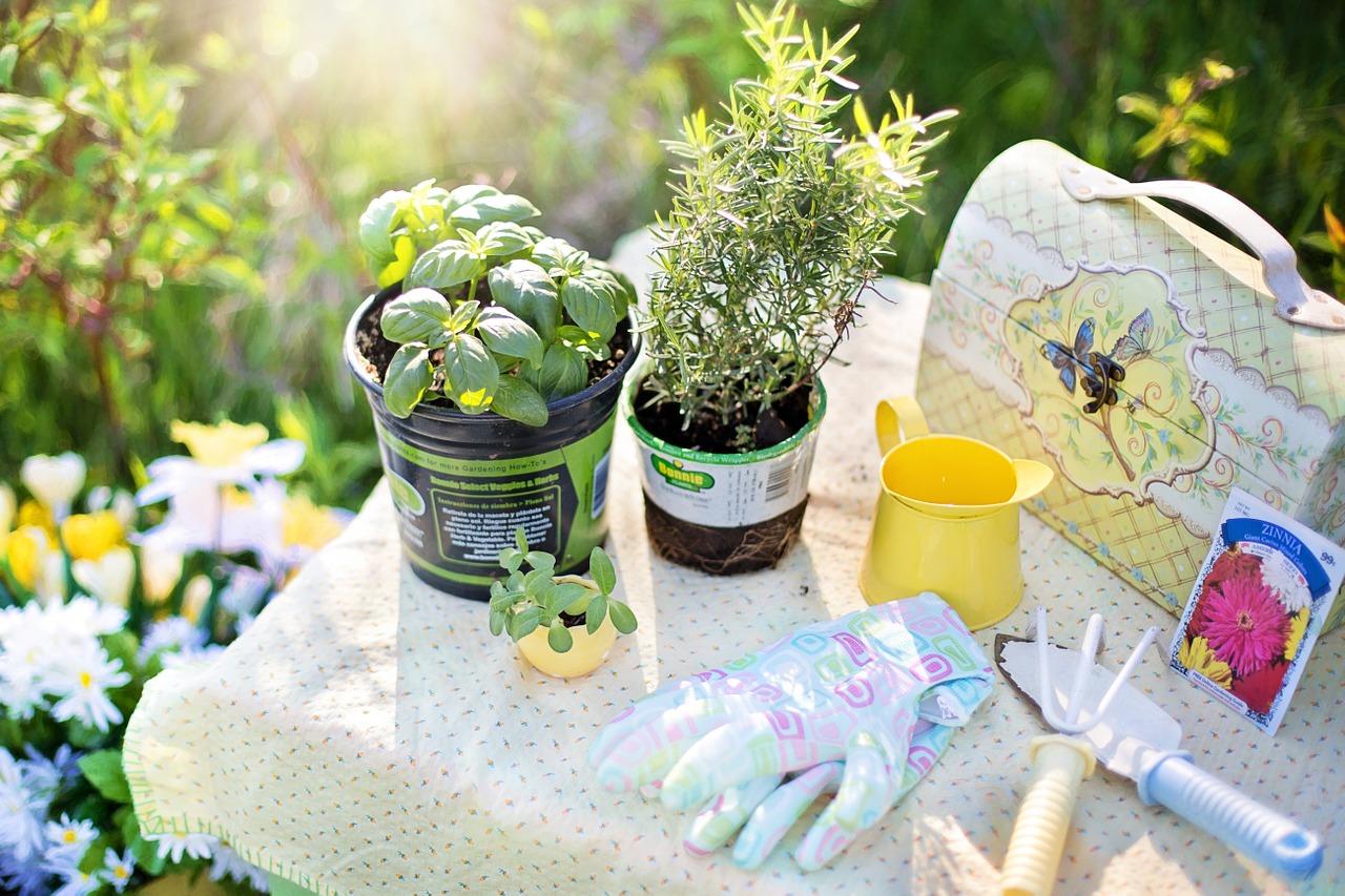初心者でも簡単!庭を彩るガーデニング9つの基礎知識